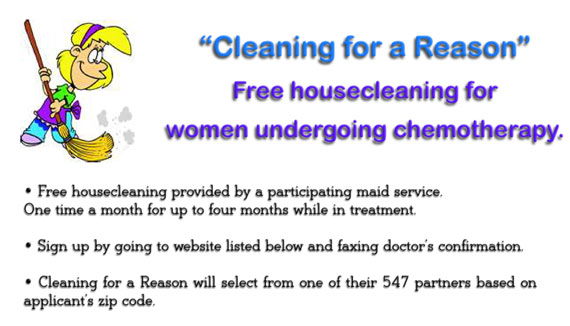 cleaning for a reason explanation